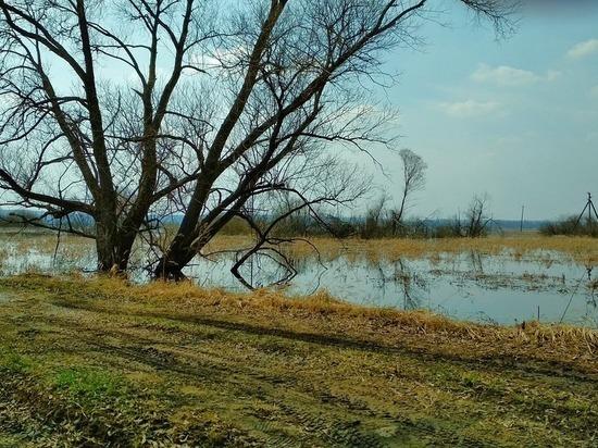 Половодье отрезает людей от большой земли во Владимирской области