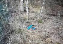 Штаб ОСС обвинил ополченцев в запуске игрушечного самолета со взрывчаткой