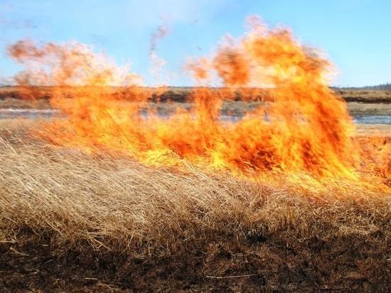 Госпожнадзор МЧС установил двух поджигателей в Хилокском районе