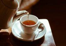 Гастроэнтеролог связал употребление горячего чая с онкологией