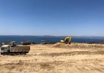 Опасный завод построят в Приморье с разрешения губернатора