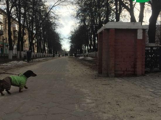 Рязанские экоактивисты назвали причину пыли и грязи на улицах города
