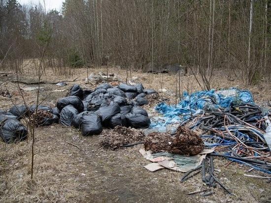 «Автоспецтранс» не будет вывозить мусор после субботников