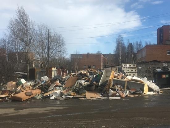 Петрозаводчане пожаловались на масштабную уличную свалку