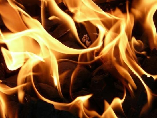 Ночью на Муромцева сгорел садовый дом