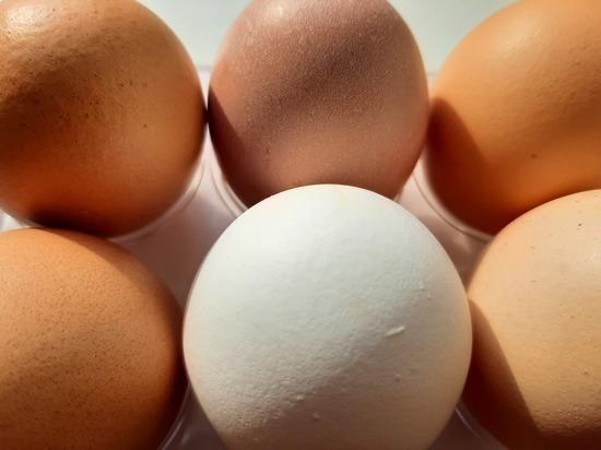 Саратовцам пообещали снизить цену на яйца