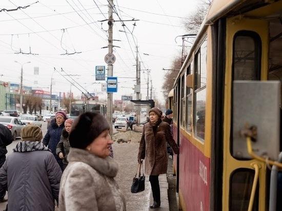 Упавшее дерево изменило маршруты трамваев №3 и №4 в Волгограде