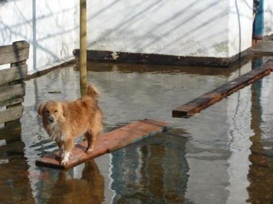 За сутки в Приангарье убрали воду ещё с 22 участков