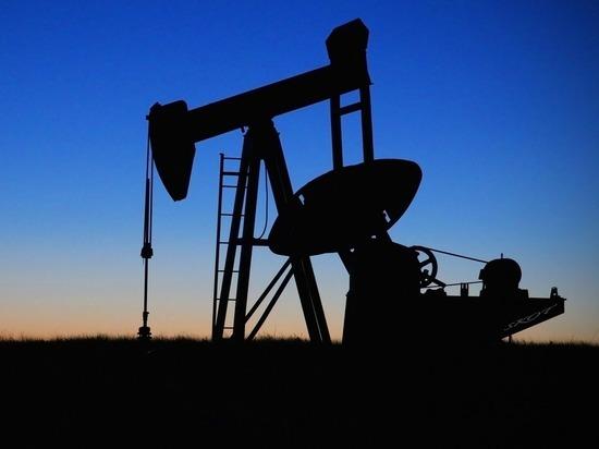 Нефтяное загрязнение леса обнаружили в Шарканском районе Удмуртии
