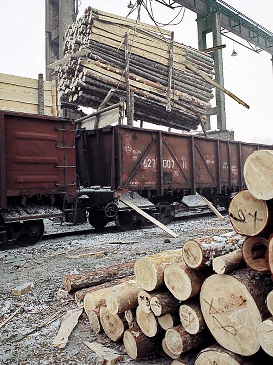 Как Бурятия отдавала в собственность Украине сотни километров леса зоны БАМа