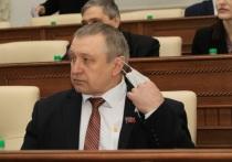Депутаты Алтайского краевого Заксобрания подали декларации о доходах и имуществе за прошлый год.