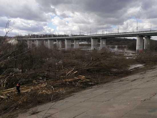 Расчистка набережной Оки в Калуге займет три недели