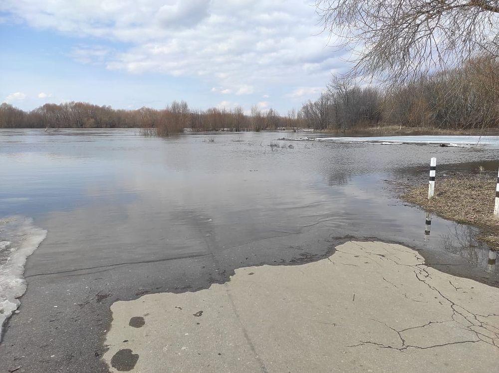Сезон большой воды: кадры половодья на Оке под Рязанью