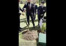 Лавров посадил дерево в столице Пакистана перед началом переговоров