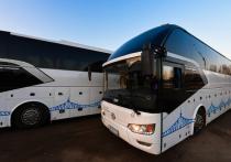 Новые линии синих автобусов: «Транспорт Верхневолжья» запустил междугородние маршруты
