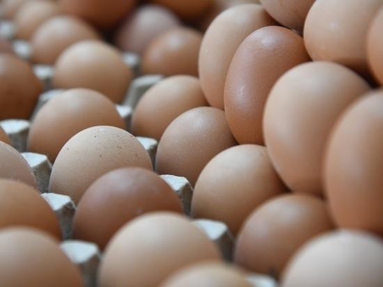 В Волгоградской области стали стоить дороже свежие овощи и яйца