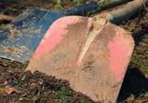 Житель Марий Эл избил жену, вооружившись ледорубом и лопатами