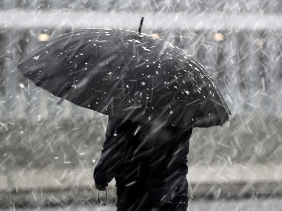 В Ярославле опять ждут дождь и метель