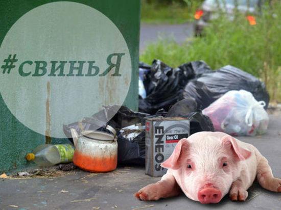 Житель Ярославля «бомбит» соседей мусором