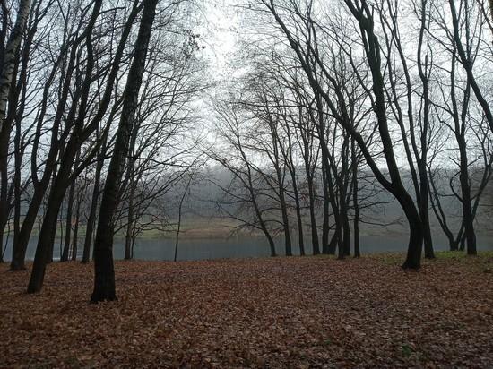 Сегодня в Туле ожидается штормовой ветер и гроза