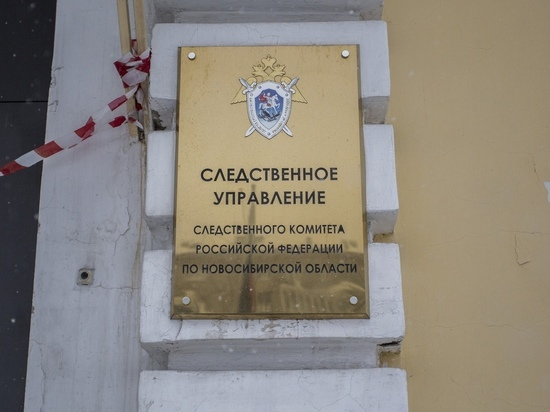 Под Новосибирском отчим избил мешавшего ему спать пасынка