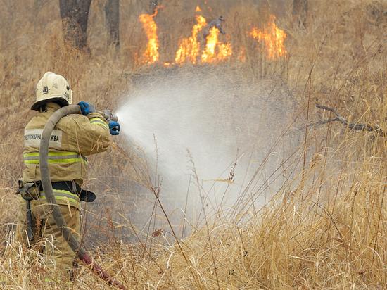Сутки назад в крае огнем были объяты 998 гектаров