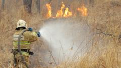 В Приморье горят гектары леса