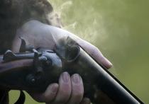 В Марий Эл расследуется дело о незаконной охоте на кабанов