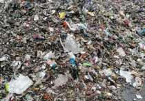 Вдоль трассы, проходящей через Ступино и Чехов, вывалили тонны мусора