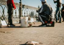 Астраханцы бьют тревогу: запасы воблы в водоемах вызывают опасения