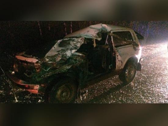 В ДТП с грузовиком под Рязанью пострадал 45-летний мужчина