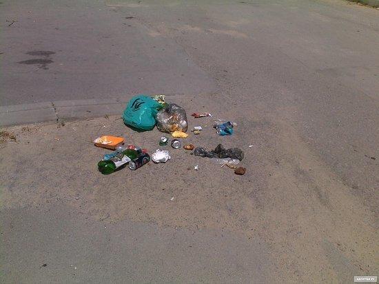 Власти Ярославля обвинили в мусоре на улице самих ярославцев