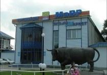 В Хакасии возбудили уголовное дело в отношении директора «Мавра» за невыплату зарплаты