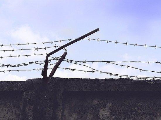 Бежаницкий суд начал рассмотрение уголовного дела локнянского истязателя