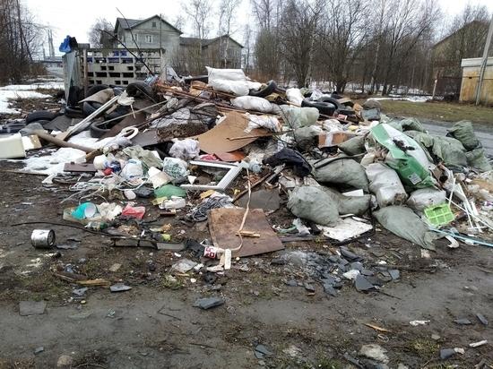 Петрозаводск заполонили стихийные свалки, администрация не успевает их убирать. ФОТО
