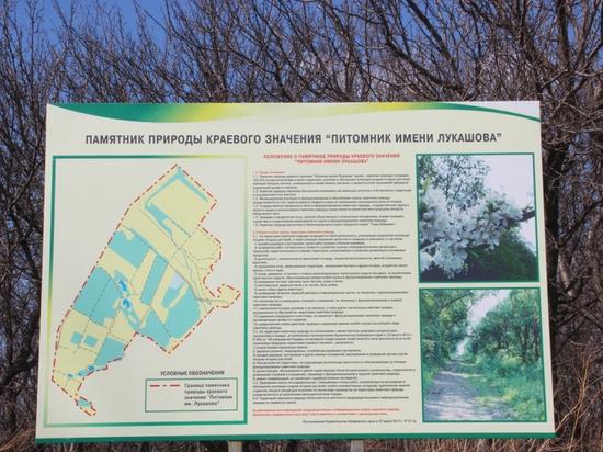 Хабаровчане предложат решения по благоустройству «Питомника имени Лукашова»