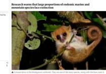 Мадагаскар, Филиппины, Шри-Ланка, а также острова в Карибском бассейне и Индийском океане могут потерять все эндемичные виды растений в течение следующих 30 лет