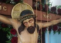Чудесно расцветший венец  в Вязовке притягивает православных паломников