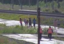 Лидер палаточного лагеря на Шиесе Анна Шекалова признана виновной в причинении побоев