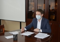 Депутаты Йошкар-Олы обсудили проект по созданию платных парковок