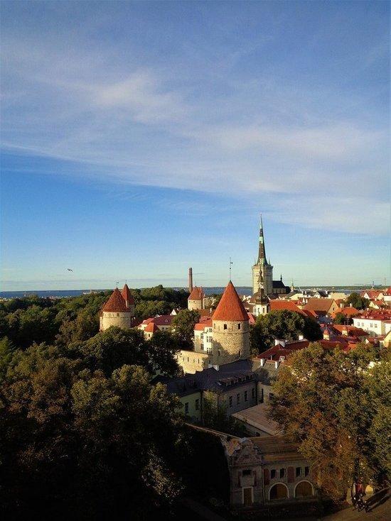 Лавров указал эстонскому коллеге на дискриминацию русскоязычных в стране