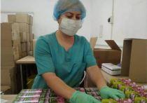 В Казахстане стали популярны травяные и медовые бальзамы из Башкирии