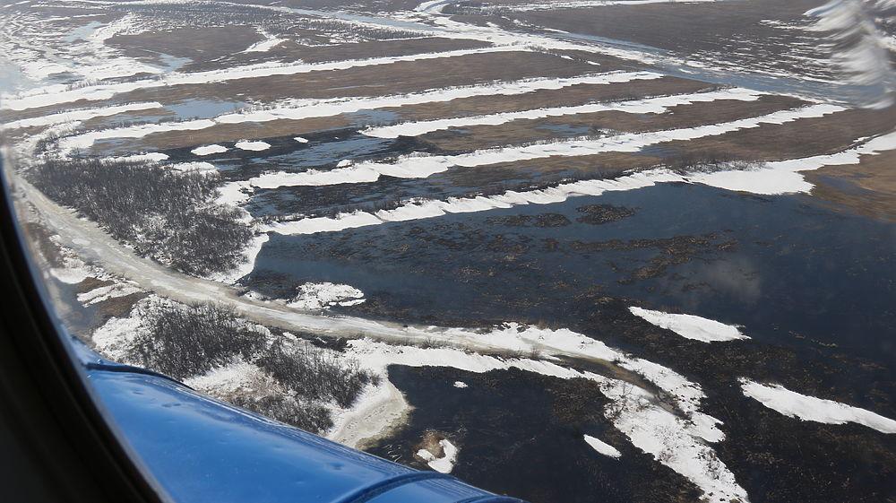 Смоет или зальет: как Алтайский край встречает масштабный паводок