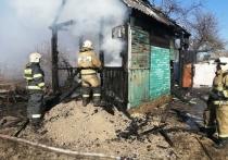 В Туле на пожаре в дачном поселке «Бежка» пострадал мужчина
