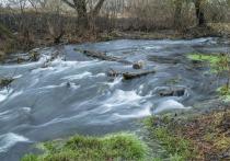 Мужчина утонул в реке Исса в Опочецком районе