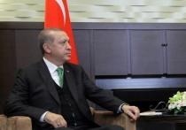 В Госдуме посоветовали Эрдогану «не заглядываться» на Крым