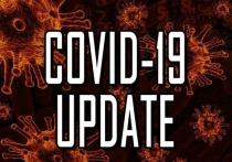 11 апреля: в Германии 17.855 новых случаев заражения Covid-19, умерших за сутки 104