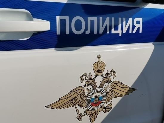 """В Плавске двое молодых людей слили из бака чужой """"ГАЗели"""" 7 литров топлива"""