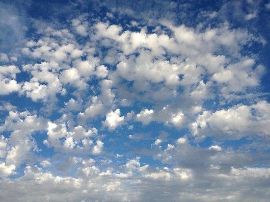Новая неделя встретит кузбассовцев туманом и потеплением до +16