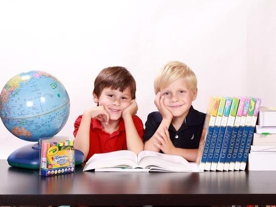 Германия: Концепция по устранению пробелов в школьном образовании